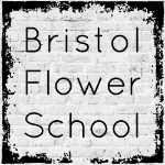 Bristol Flower School